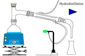Chap 6 extraction s paration et identification d - Chromatographie sur couche mince principe ...